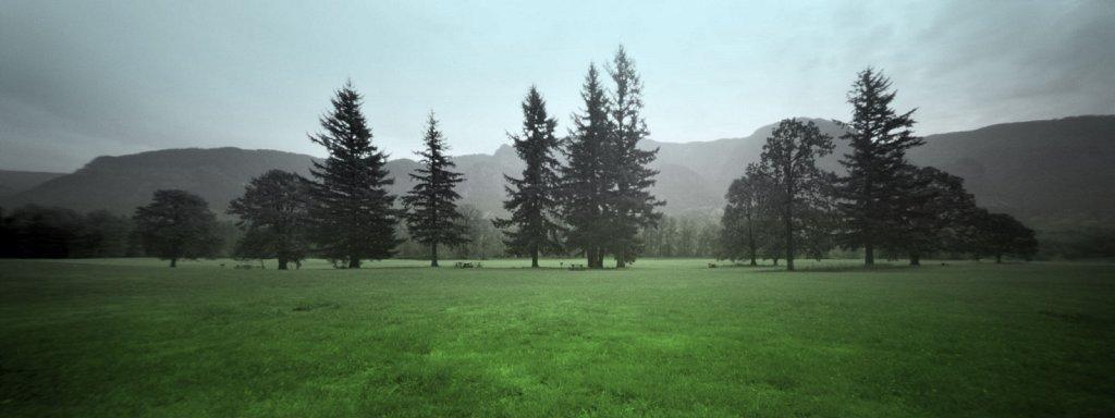 pinhole 885, landscape